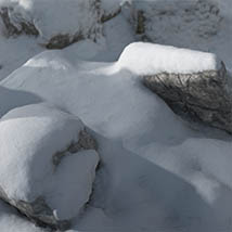 3D Scenery: Nordic Winter Woods - Extended License image 1