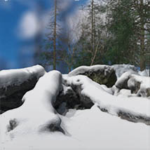 3D Scenery: Nordic Winter Woods - Extended License image 2