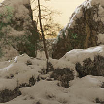 3D Scenery: Nordic Winter Woods - Extended License image 3