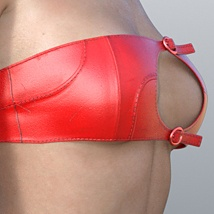 Strap Outfit for G3F image 2