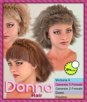 Biscuits Donna Hair 3D Figure Assets Biscuits