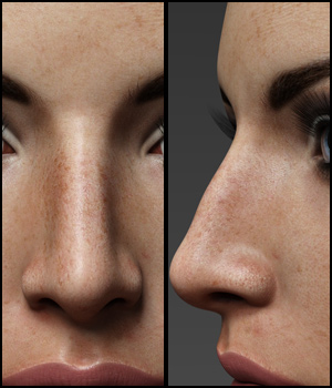 Nose Morphs for G3F Vol 1 3D Figure Assets Merchant Resources Anagord