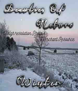 Beauties Of Nature - Winter 2D Graphics Merchant Resources Mystique-