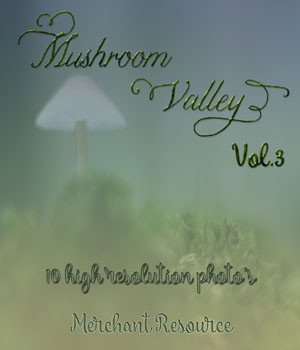 Mushroom Valley Vol.3 2D Graphics Merchant Resources Mystique-