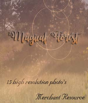 Magical Forest 2D Graphics Merchant Resources Mystique-