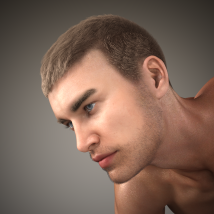 Short Cropped Hair for Genesis 3 Male and Females image 4