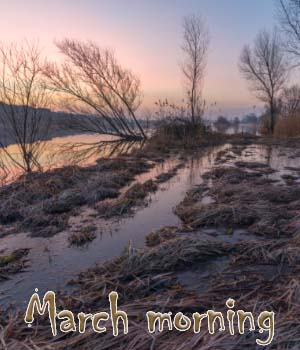 March morning 2D Graphics 1971s