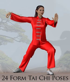 24 Form Tai Chi Poses 3D Figure Assets apcgraficos