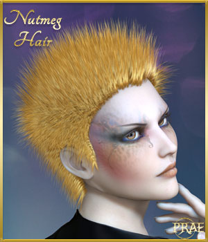 Prae-Nutmeg Hair for Poser 3D Figure Assets prae