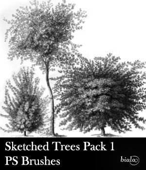 Sketched Trees PS Brushes Pack 1 2D Graphics biala