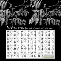 Sketched Trees PS Brushes Pack 1 image 7