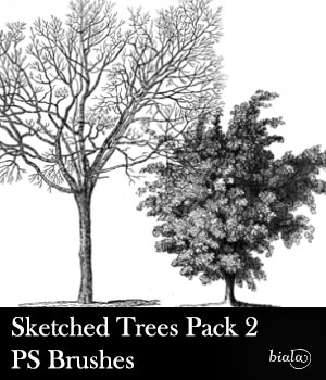 Sketched Trees PS Brushes Pack 2 2D Graphics biala