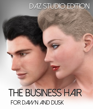 The Business Hair for Dawn and Dusk -Daz Studio Edition  3D Figure Assets RedzStudio