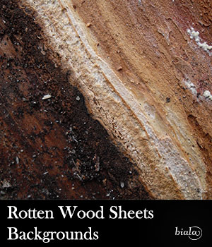 Rotten Wood Sheets 2D Graphics biala