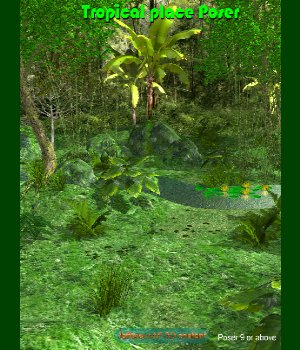 Tropical place Poser 3D Models JeffersonAF