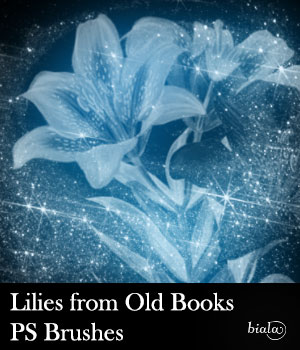 Lilies from Old Books PS Brushes 2D Graphics biala