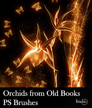 Orchids from Old Books PS Brushes 2D Graphics biala