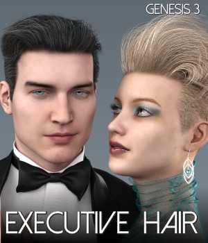 Executive Hair for Genesis 3 Male and Female 3D Figure Assets RedzStudio