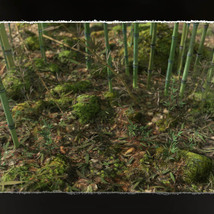 3D Scenery: Wild Mossy Bamboo Forest image 3