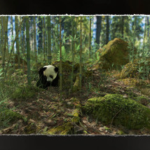 3D Scenery: Wild Mossy Bamboo Forest image 5