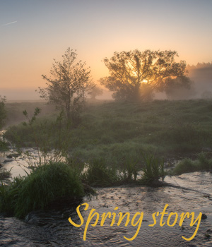 Spring Story 2D Graphics 1971s