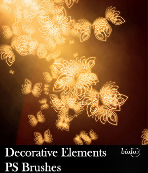 Decorative Elements PS Brushes 2D Graphics biala