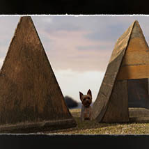 Photo Props: Handmade Old Doghouse image 3