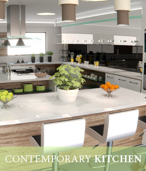 Contemporary Kitchen 3D Models TruForm