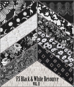 FS Black & White Resource Vol. II 2D Graphics FrozenStar