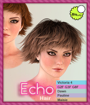 Biscuits Echo Hair 3D Figure Assets Biscuits
