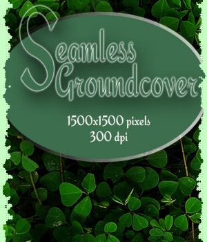 Seamless Ground Cover 2D Graphics antje