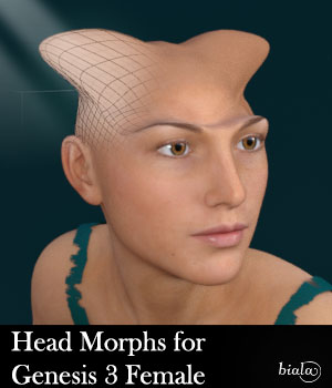 Head Morphs For Genesis 3 Female 3D Figure Assets biala