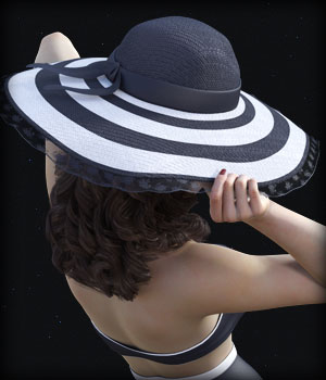 Morphing Wide Brimmed Hat for G3F/G8F and Universal Prop 3D Figure Assets EdArt3D