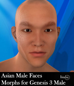 Asian Male Faces Morphs for Genesis 3 Male 3D Figure Assets biala