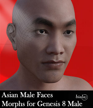 Asian Male Face Morphs for Genesis 8 Male 3D Figure Assets biala