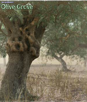 3D Scenery: Olive Grove 3D Models ShaaraMuse3D