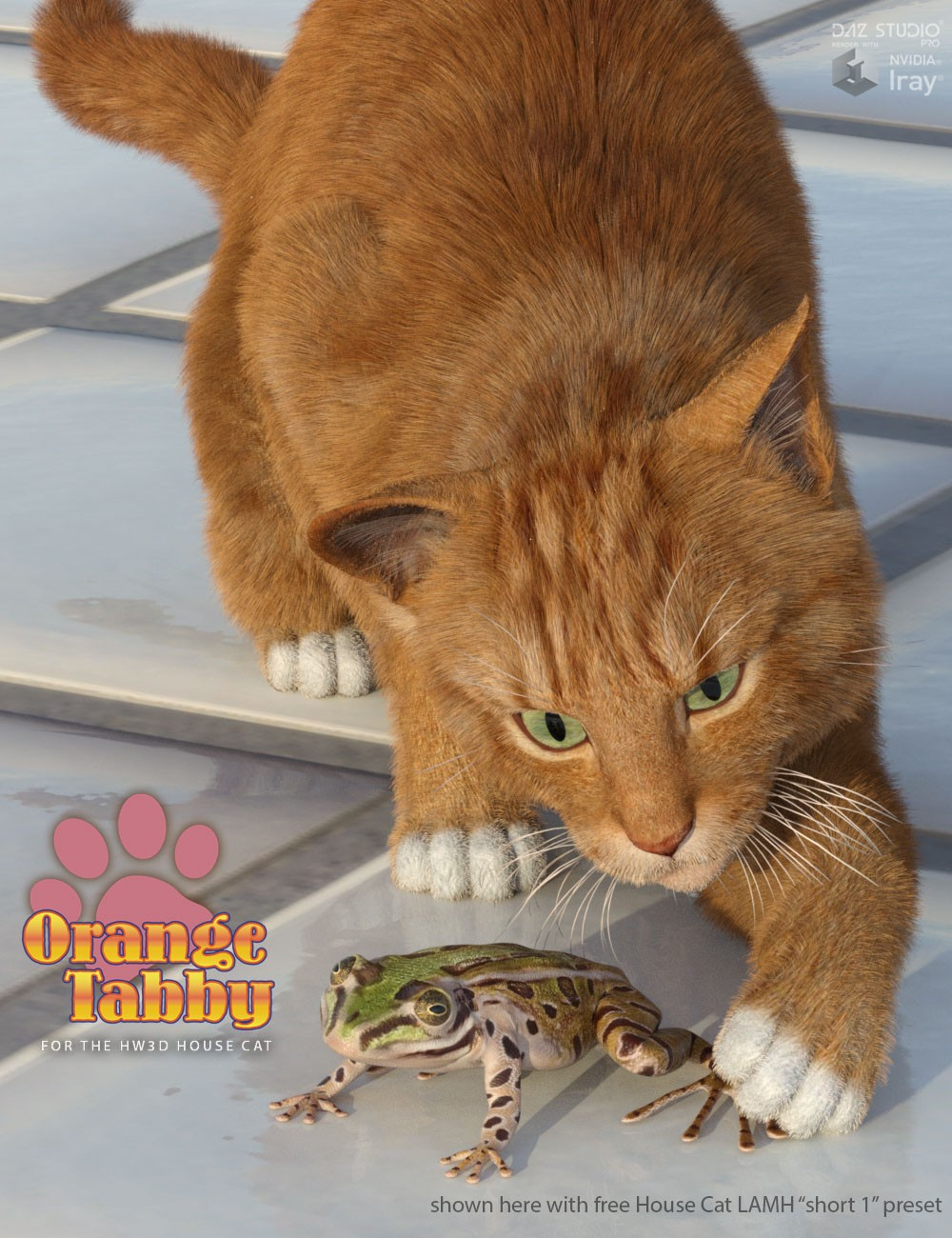 CWRW Orange Tabby for the HiveWire House Cat