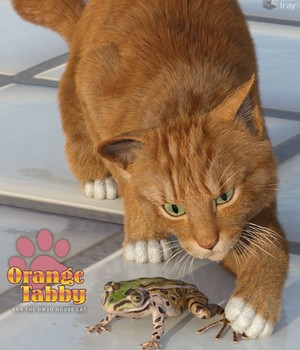CWRW Orange Tabby for the HiveWire House Cat 3D Figure Assets 3D Models cwrw
