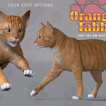 CWRW Orange Tabby for the HiveWire House Cat image 5