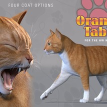 CWRW Orange Tabby for the HiveWire House Cat image 7
