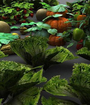Vegetable Plants 2 - Extended License 3D Game Models : OBJ : FBX 3D Models Extended Licenses dexsoft-games