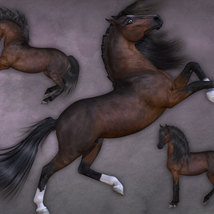 CWRW Pose Pack 1 for HiveWire Horse image 7