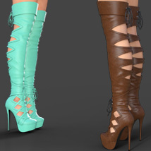 Augusta High Boots for Genesis 8 Females image 1