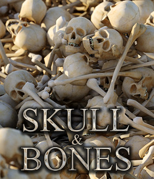 Flinks Skull & Bones 3D Models Flink