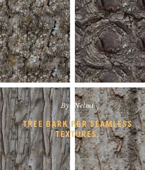 12 PBR Tree Bark Textures with Texture Maps  2D Graphics nelmi