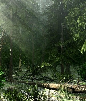 Northern Vegetation - Extended License 3D Game Models : OBJ : FBX 3D Models Extended Licenses dexsoft-games