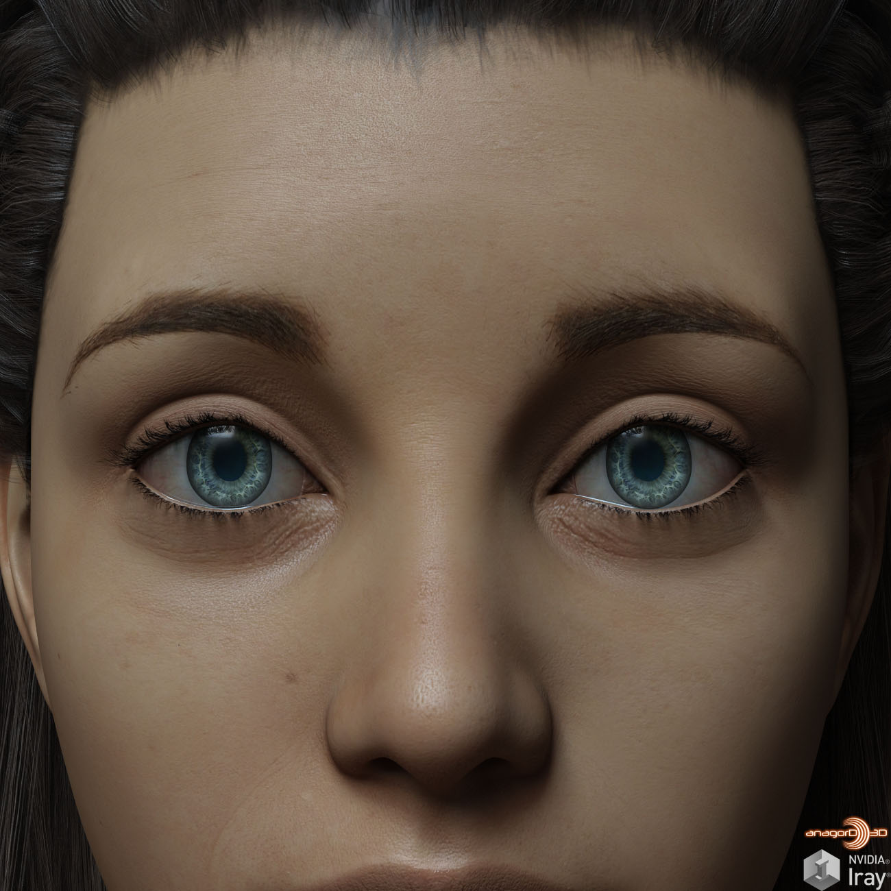 Eyes and Eyebrows Morphs G8 Vol2 by Anagord