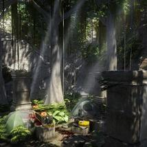 Lost City - Extended License image 7