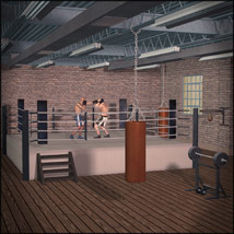 Boxing Gym image 1