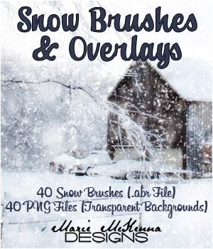 PS Brushes: Snow & Overlays 2D Graphics Merchant Resources MarieMcKennaDesigns